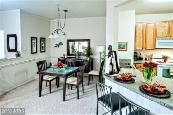 Occupied Dining Area Staging