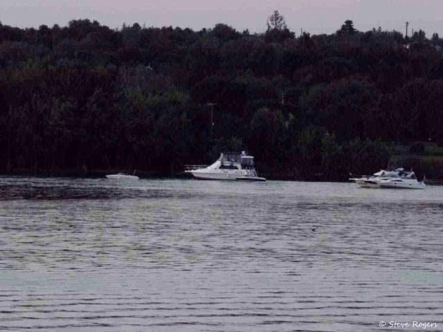 Boats Anchored