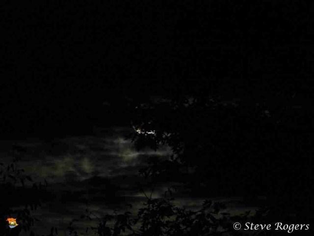 Hunters Moon 006