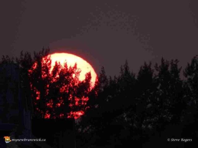 St Andrews sunset 511