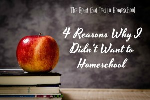The Road that Led To Homeschool:  Four Reasons Why I Didn't Want to Homeschool