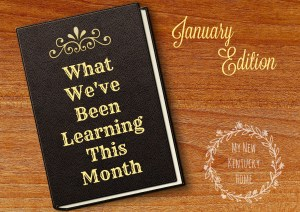 What We've Been Learning This Month: January Edition