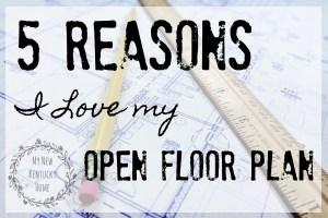 5 Reasons I Love My Open Floor Plan