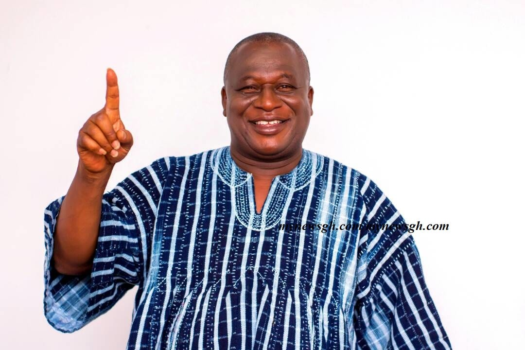 NPP National Chairman Aspirant appointed to Bui Power Authority Board
