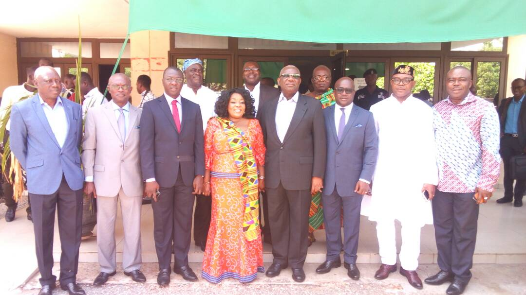 Wean Ghana Gas of Gov't Support -Energy Minister Tells New Board