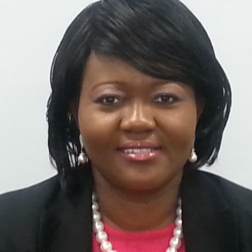 Dr Tina Abrefa-Gyan Outlines Her Vision For NPP-USA