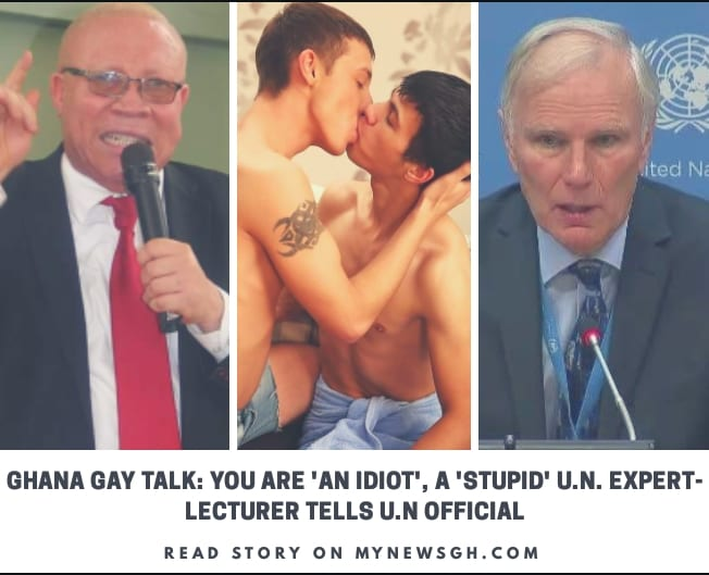 UN gay talk: You're an 'idiot', a 'stupid' UN expert- Lecturer tells UN official