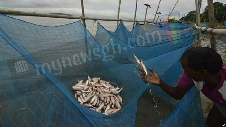 C/R Malaria Boss begs communities to stop using treated mosquito nets for fishing
