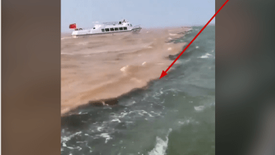 Rare Video Of The Point Between Lybia and Italy Where The Mediterranean Sea