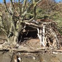 Building 17: beach hut
