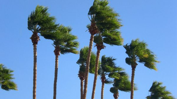 Expect a windy week in the Southland - MyNewsLA.com