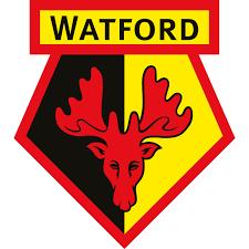 watford,