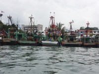Fishing boats. These are taken near the city already