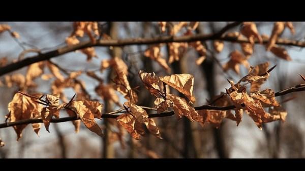 Screen Shot 2013-03-30 at 16.27.32