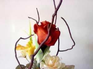 A flower-n73