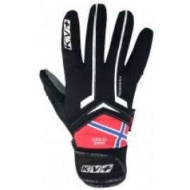 Gants Cold Pro KV+