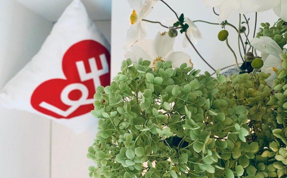 Hortensiendekor