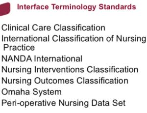 Standardized Terminologies (ST) in Practice