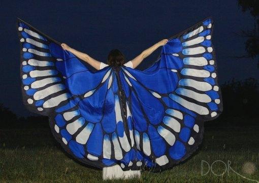 wing-6