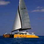 Wild Hearts Catamaran Sailing Trips in Orange Beach