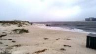 Orange Beach Isaac Photos_Rebounds at Perdido Pass