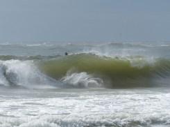 ESA Surf contest 11-11-12_ 011