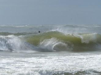 ESA Surf contest 11-11-12_ 012