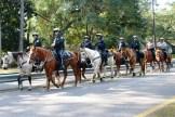 Island Mystics Mardi Gras Parade Photos 2013 Police on Horseback
