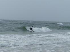 Small Surf Sunday Alabama Point 01-13-13_06