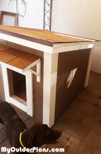 Diy Large Insulated Dog House Myoutdoorplans Free