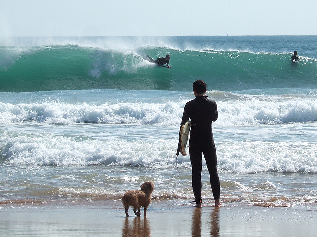 /Users/sarah/Documents/Upwork /June Vacations/Carcavelos Pictures/Surfer and Dog.jpg