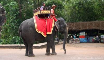 Elephant at Angkor Thom South Gate