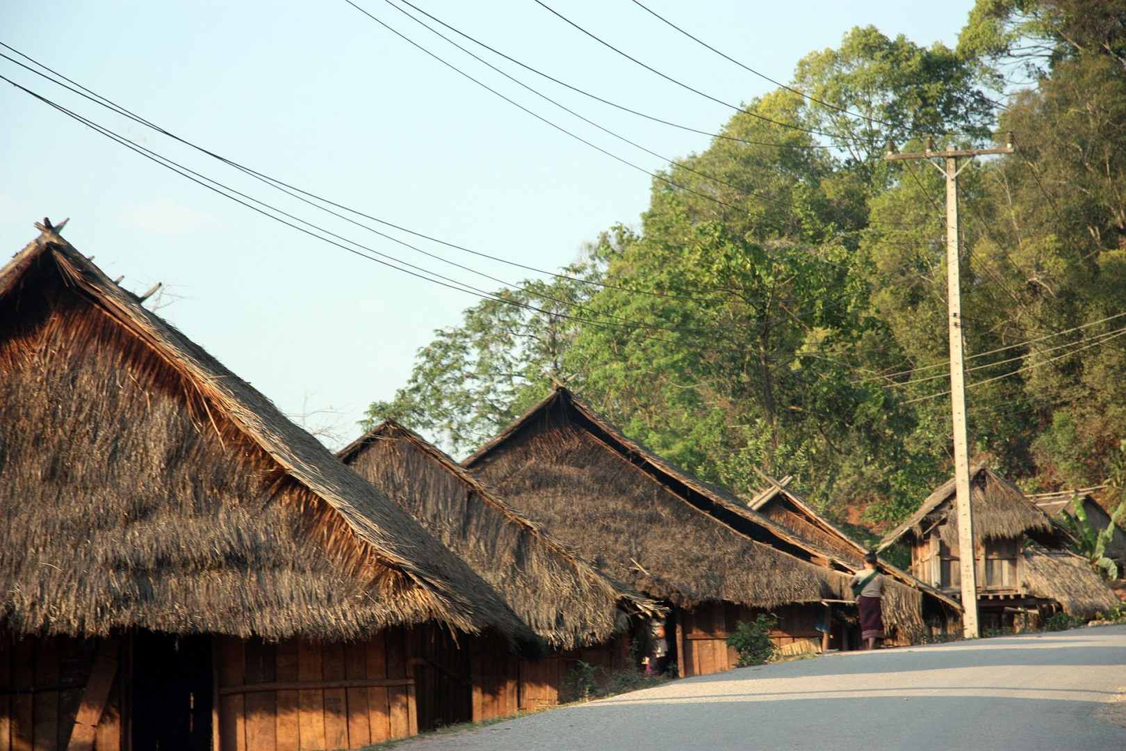Thatched houses-northern Laos