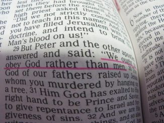 bible-380848_640