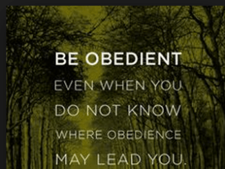 Obedience 9803471209