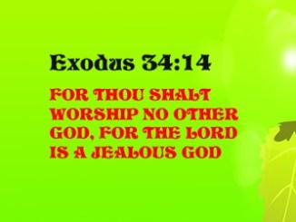 Exodus 410468119207