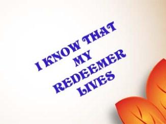 Redeemer 3733046920986723