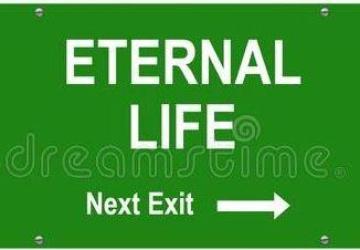 Life 29087634675