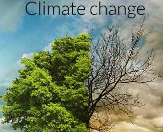 Climate change 19879876536526454