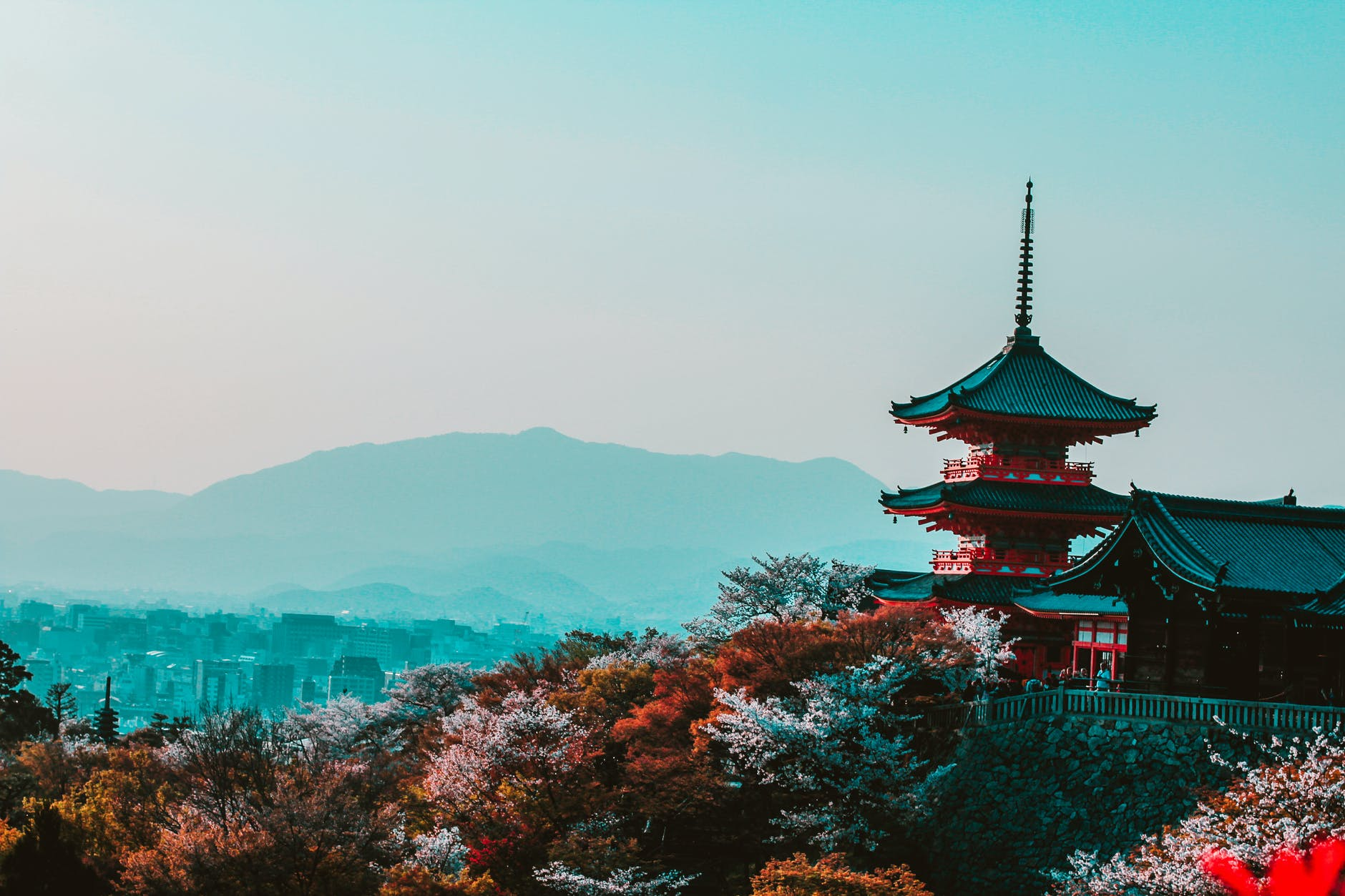 red and black temple surrounded by trees photo