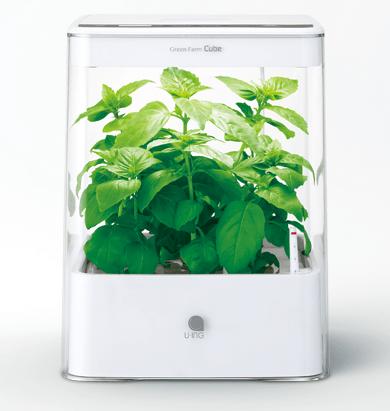 HYPONeX(ハイポネックス)購入~野菜の栽培&LED電気照明水耕栽培キット用に使う