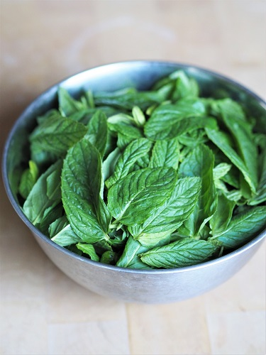 Homemade fresh mint syrup