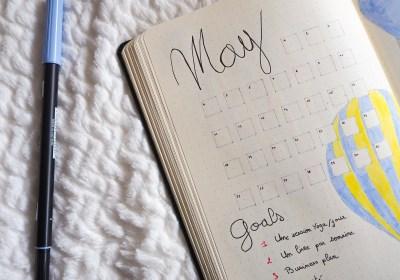 Bullet-journal-mai-set-up-goals