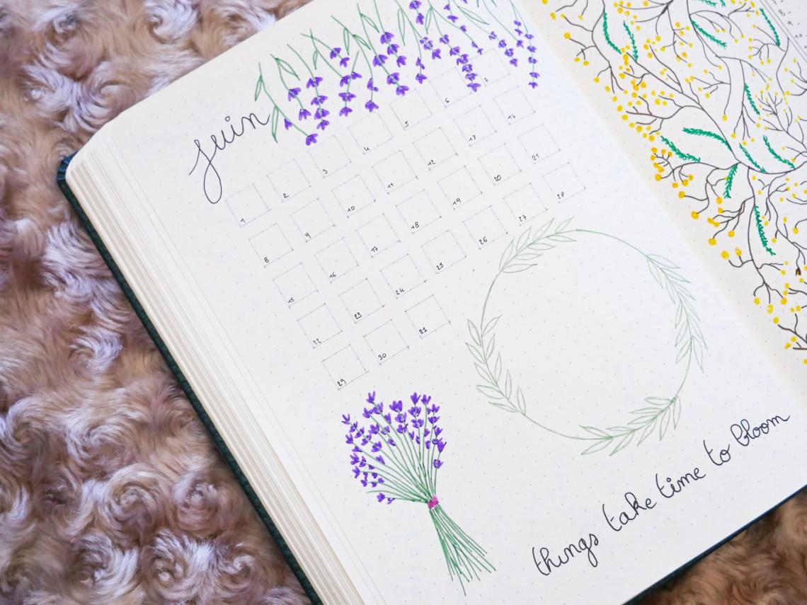 bullet-journal-juin-monthly-log