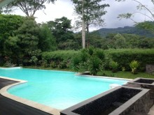 Our pool. Evening swims are the best!