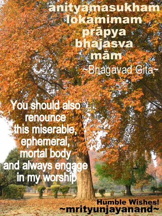 You should also renounce this miserable, ephemeral, mortal body and always engage in my worship.'...!!!!