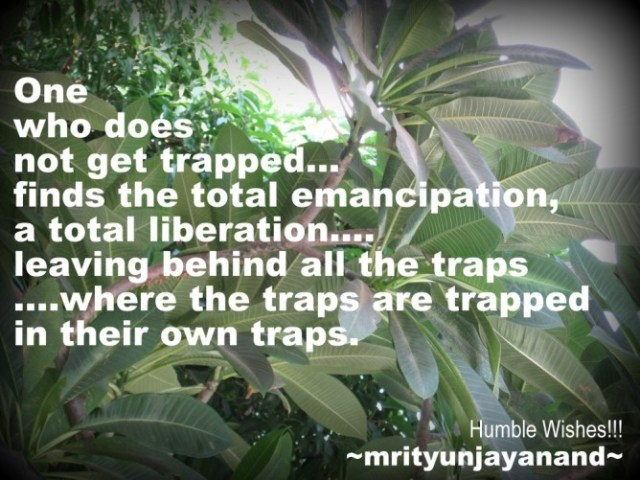 One who does not get trapped...!!!!
