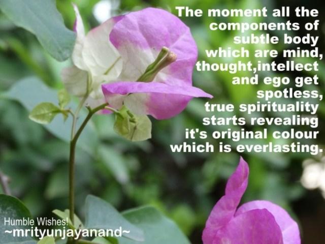 True Spirituality....!!!