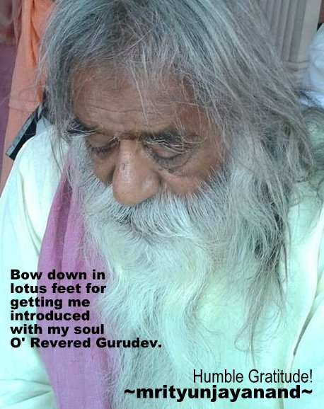 Bow down in lotus feet...!!!
