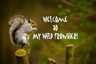 Welcome to my Wild Frontier!